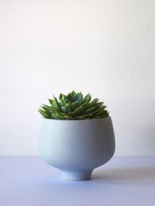 small-blue-pedestal-succ