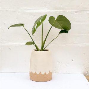 Petal Vase White