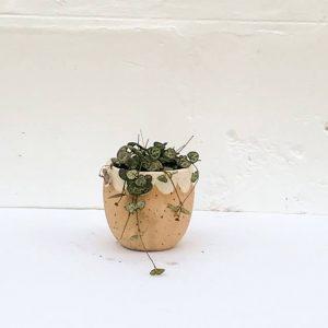 Petal Vase small