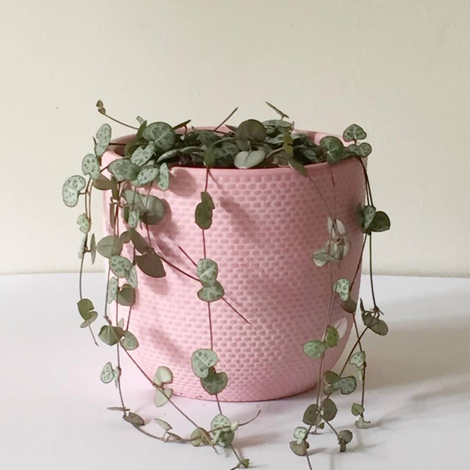 Pink Tweed Hearts